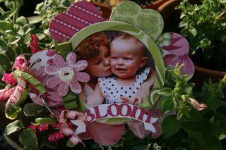 Bloompinkgreen