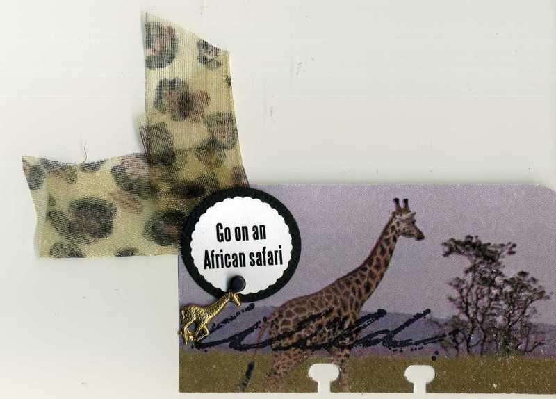 Rolodex_safari001_2